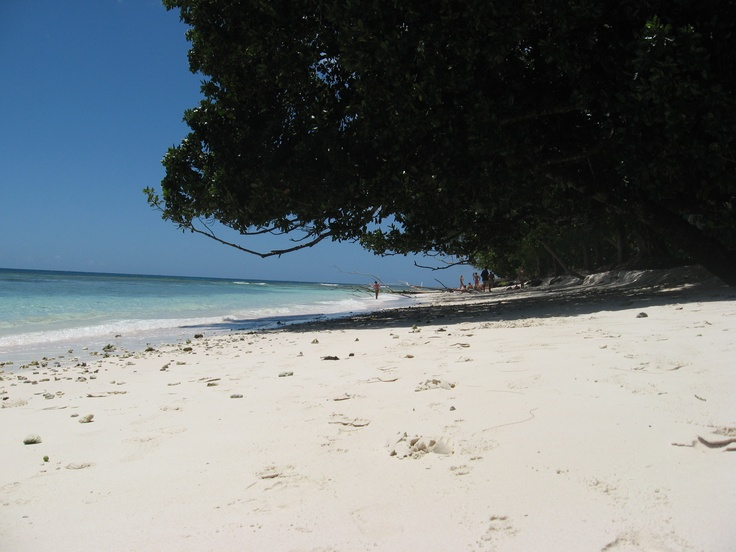 Playa de la isla Digue en las Seychelles. Arena blanquísima y agua turquesa. Alquilar un coche en el aeropuerto de Mahé: http://www.reservasdecoches.com/es/alquiler-de-coches/Mahe-Island_Seychelles-Airport.html