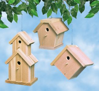 20 best images about bird project patterns on pinterest for Simple house design made of wood
