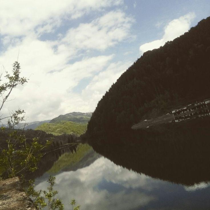 Mirror of lake