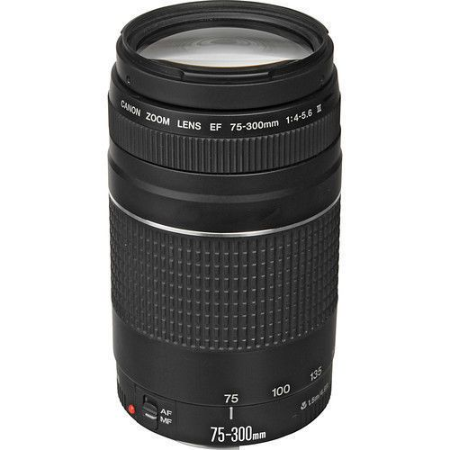 How to Use a Canon Zoom Lens EF 75-300mm