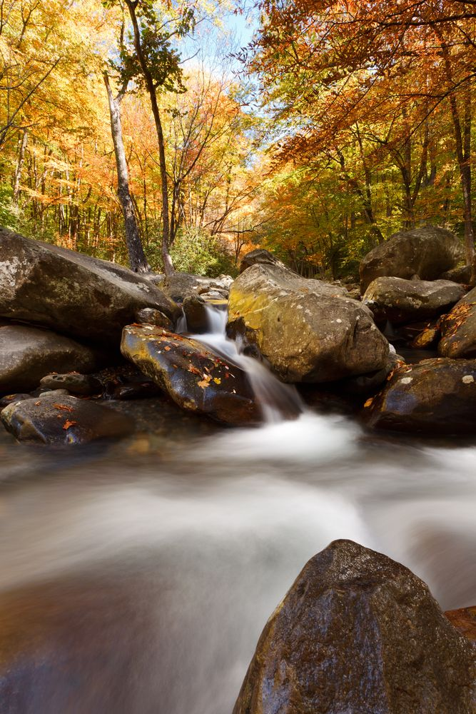 Amazing picture in the Smoky Mountains