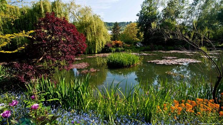 garden-1920x1080-030.jpg (1920×1080)