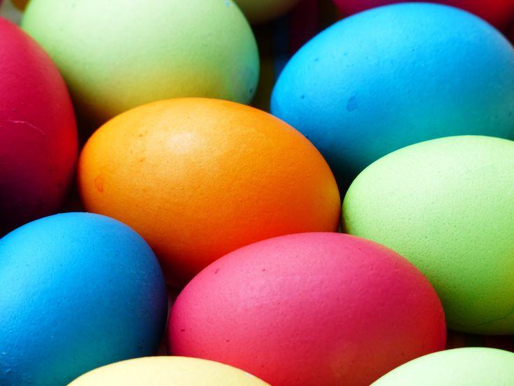 Wiemy, co było pierwsze - jajko! - Inspirowani Naturą