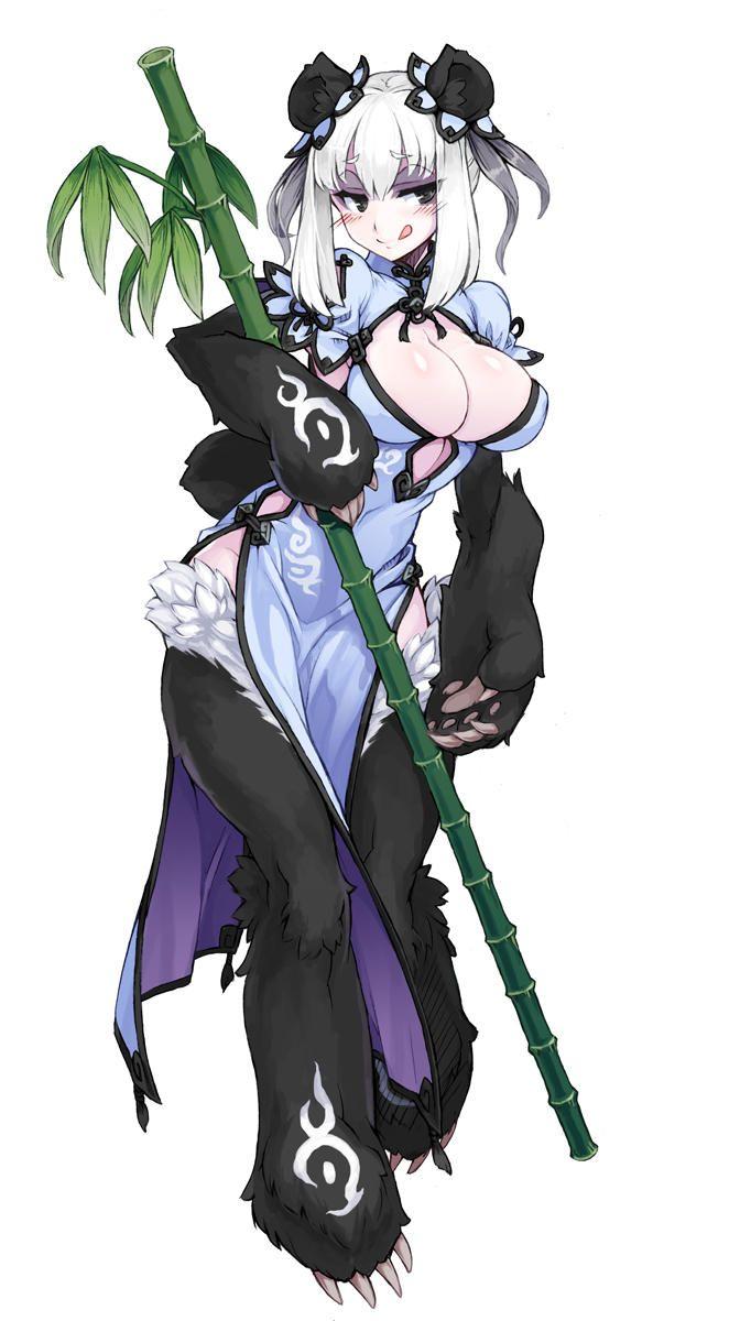 Ren Xiongmao Monster Girls Monster Girl Encyclopedia Anime Monsters Anime Art Girl