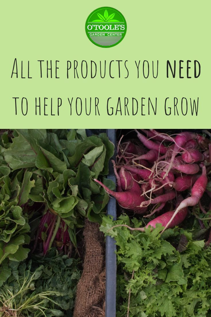 O Toole S Garden Centers Has Got All The Products You Need To Keep Your Lawn And Garden Healthy All Year Long Garden Center Growing Vegetables Lawn And Garden