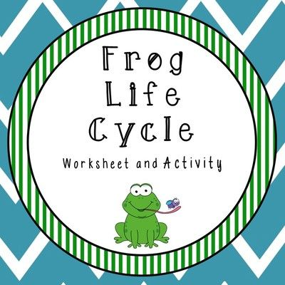 Frog Life Cycle Center from Sugar Beans Bilingual Resources on TeachersNotebook.com -  (10 pages)  - Frog life cycle poster, sequencing mat, and worksheet in color and black and white.
