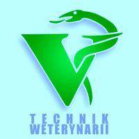 Technik weterynarii z blue education