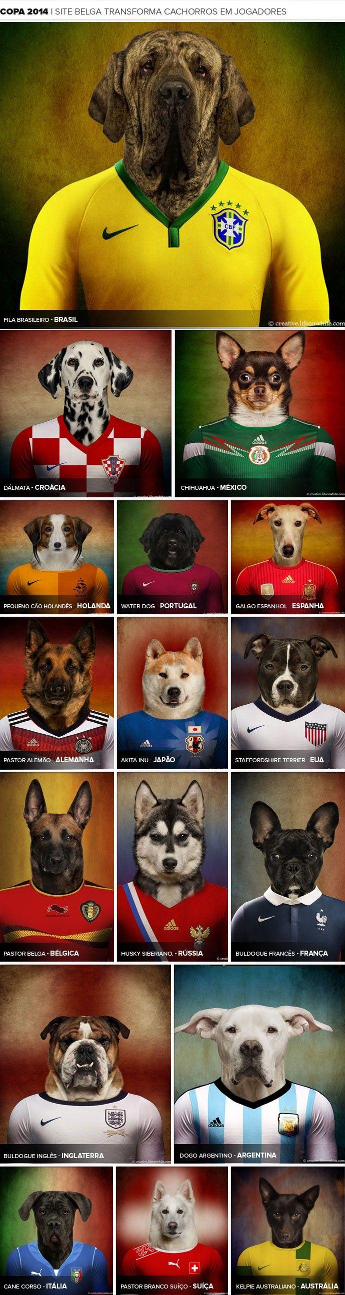 BLOG: Site registra raças de cachorros com camisas de suas pátrias de origem.05/03/2014.