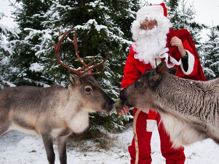Skafur-Tour found Santa Claus in Vuokatti, north-eastern Finland, where he had stopped for a break before heading to the south. He had a sledge full of gifts and two reindeers with him - one of them must be Rudolf.  You can meet him at Vuokatti Safaris both on 23rd and 26th Dec!