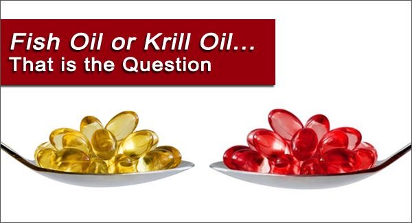Fish Oil or Krill Oil…That is the Question