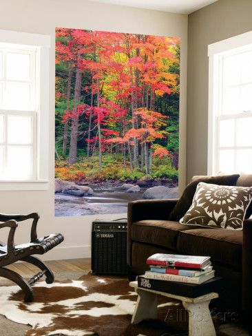 Autumn in the Adirondack Mountains, New York, Usa Wall Mural