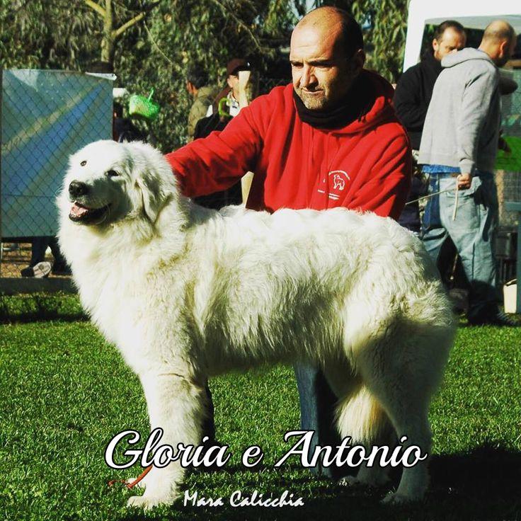 In posa per Gloria e il suo umano Antonio #MyDogAndMe