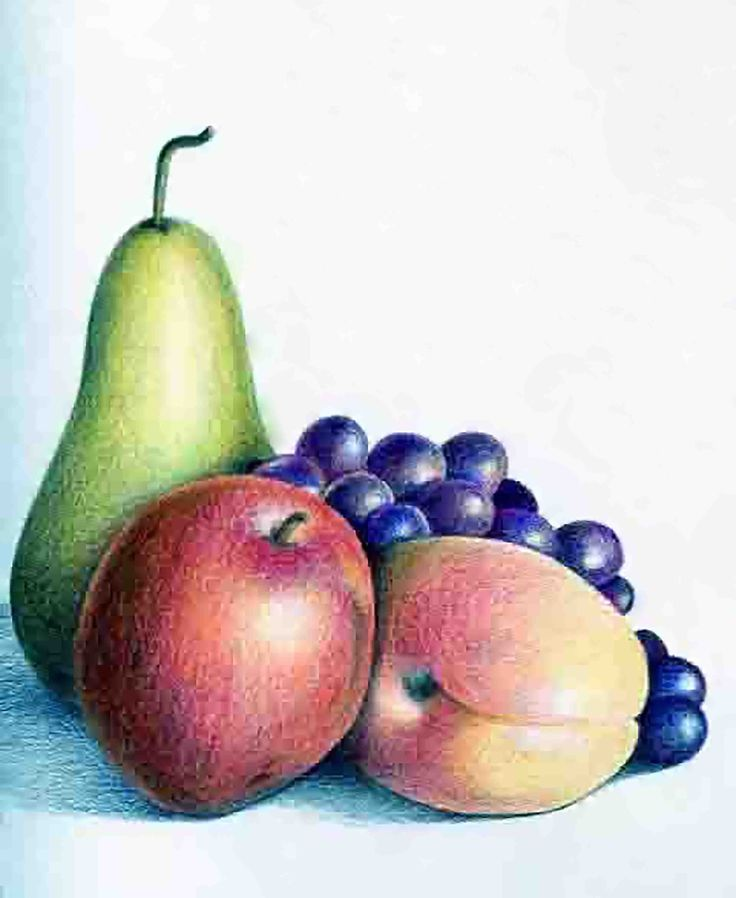 This is a still life drawing of fruits, which includes a lot of highlight.
