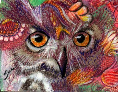 Owl Drawing Color Colorful Owl Drawings Colorful