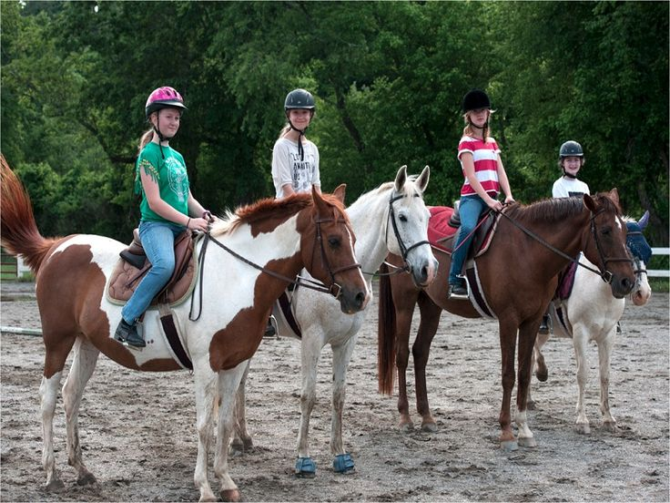 17 Best Images About Ridding Lessons On Pinterest