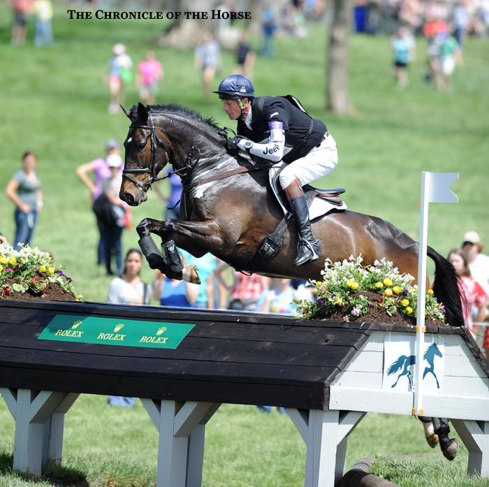 Photos by Lisa Slade and Sara Lieser William Fox-Pitt and Bay My Hero| The Chronicle of the Horse