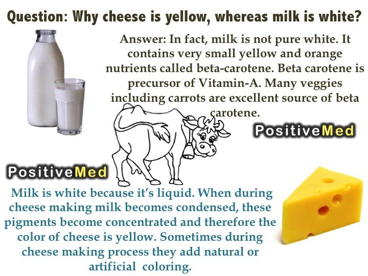 Question: Why Cheese is yellow, whereas milk is white? - http://eradaily.com/question-cheese-yellow-whereas-milk-white/