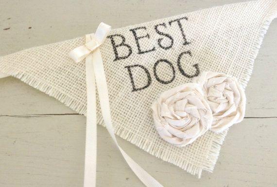 Ivory Ring Bearer Best Dog Girl Collar with Flowers Bandana Rustic Burlap Wedding Photo Prop