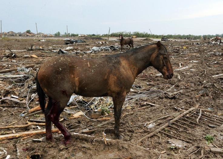 1000 images about strange tornado damage on pinterest