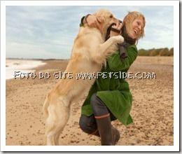 Como fazer o cachorro parar de pular em você