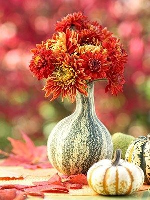 Thanksgiving - crookneck squash into vase...love this!!