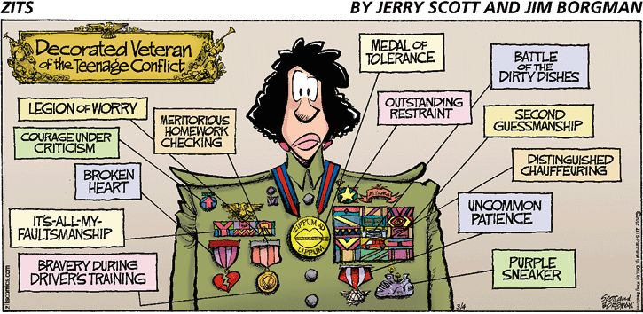 """""""Decorated Veteran of the Teenage Conflict"""" by Jerry Scott & Jum Borgman from the Zits comic strip.  **I almost fell out of my chair at work when I saw this...**"""