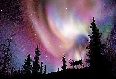 Northern Lights - The Aurora Borealis is also called the Northern Lights, as it is only visible in the sky from the Northern Hemisphere, the chance of visibility increasing with proximity to the northern magnetic pole, which is currently in the arctic islands of northern Canada.