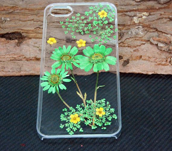 Green Daisy iPhone 4 CasePressed flower Phone by UUniquecase