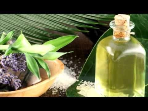 Benefits of Eucalyptus Tea - World Of Herbal Health