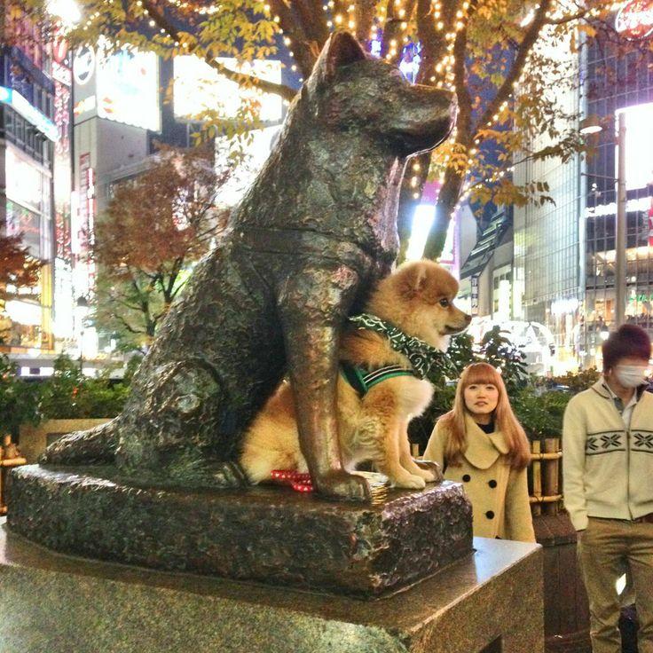 Dreaming big at Hachiko statue, Tokyo