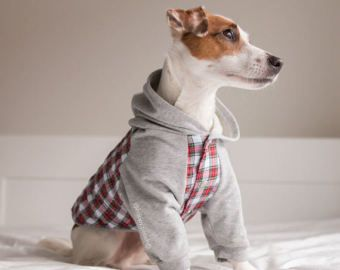 Perro de franela con capucha, chaqueta del perro, ropa del perro, capa del cachorro, perro suéter, chaqueta de franela de perro, perro abrigo de invierno, edición limitada