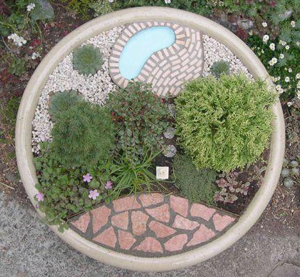 Living Miniature Garden in Planter, Top View   Cotton Ridge Create!