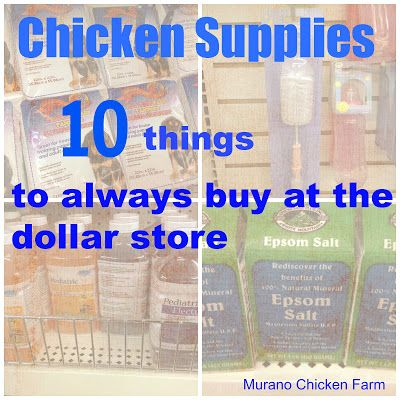 Murano Chicken Farm: 10 Chicken Supplies from the Dollar Store, a great article with tips on how to save money on supplies we all need for our pets!