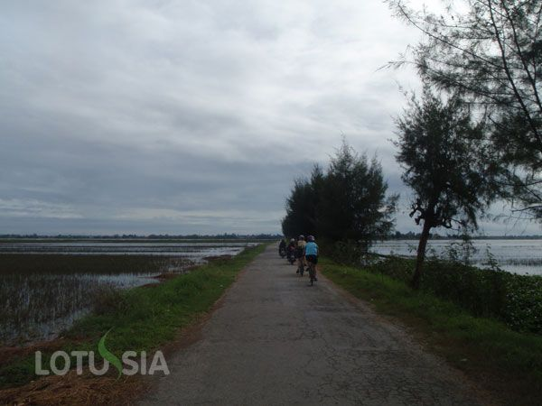 The 3-day biking tour is customized for those travel to Vietnam from Phnom Penh,cycling mekong delta vietnam, Cambodia. After crossing the Vietnam-Cambodia border gate in Phnom Penh, Chau Doc, you will begin your 3-day bicycl cycling towards Ho Chi Minh city (Saigon). You will bike through the Mekong Delta, pedaling Chau Doc, Long Xuyen, Can Tho. This is an easy bicycle tour since you cycle on flat paved roads and backroads in the Mekong Delta area