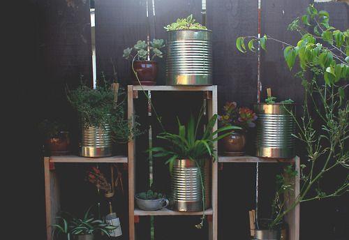 backyard garden/herbs in giant tin cans. handmade and designed shelves. #garden #diy #backyard