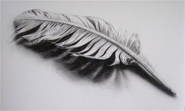 Feather by Melinda Alice Kierre, graphite pencil, 2008 ...