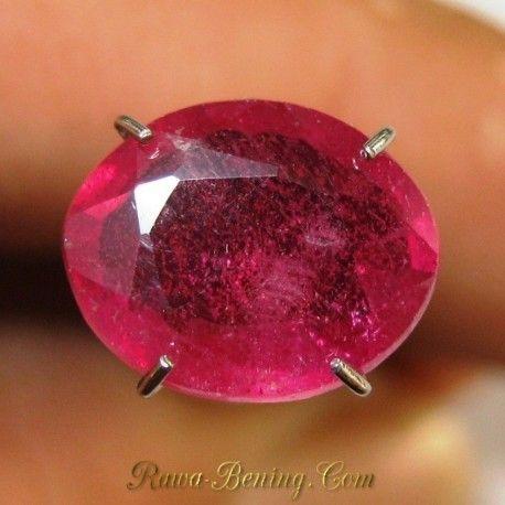 Jual Batu Sapphire Asli Oval 2.90 carat ~ www.Rawa-Bening.Com