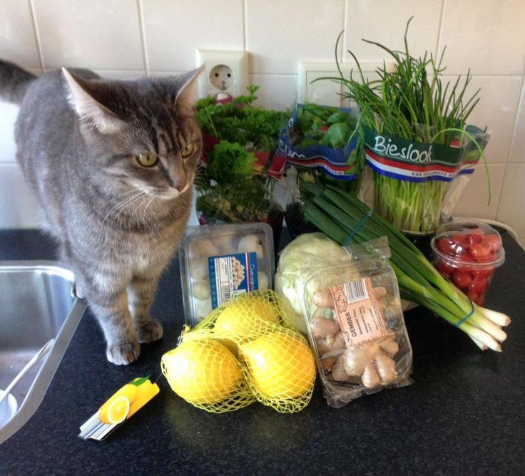 Na zeven dagen is de groentela van de koelkast leeg. Consuminderen betekende zeven dagen geen boodschappen. Nu weer voor 12 euro nieuwe vitaminenvoorraad. En doorrrr! Met Dwarsdoordevoorraadkastrecepten tot die voorraadkast ook leeg is! ;)