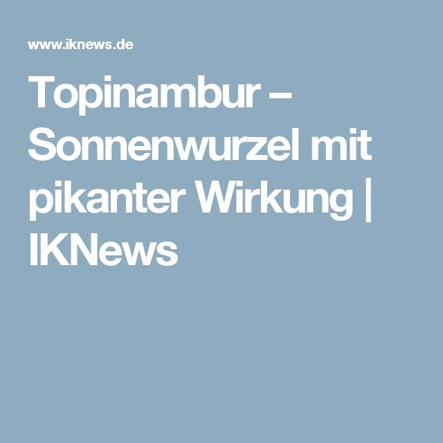 Topinambur – Sonnenwurzel mit pikanter Wirkung | IKNews