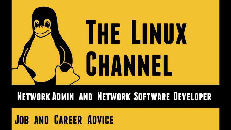 Job and Career Advice - Network Admin and Network Software Developer