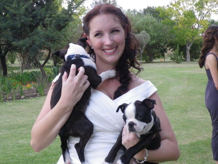 Mich and pups