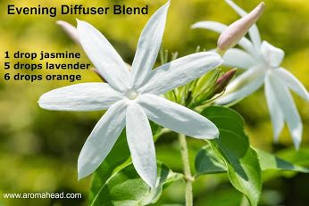 Diffuser Blend, Jasmine, Lavender, Orange