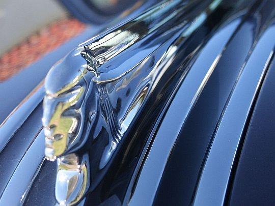 Pontiac Chieftain Emblem