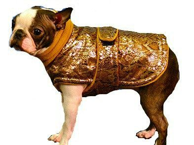 Designer Dog Coat, custom made with turtleneck or snood just for your dog - pinned by pin4etsy.com