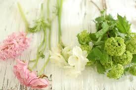 bouquet white 1 flower - Google Search