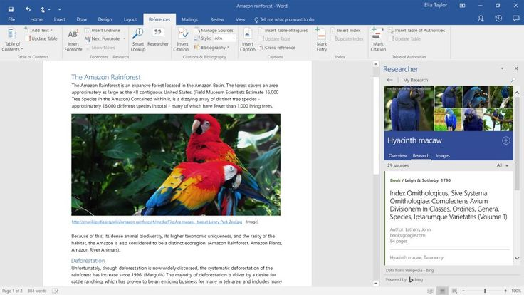 How the Modern Librarian is Guiding Research in the Online Era – Microsoft in Education blog