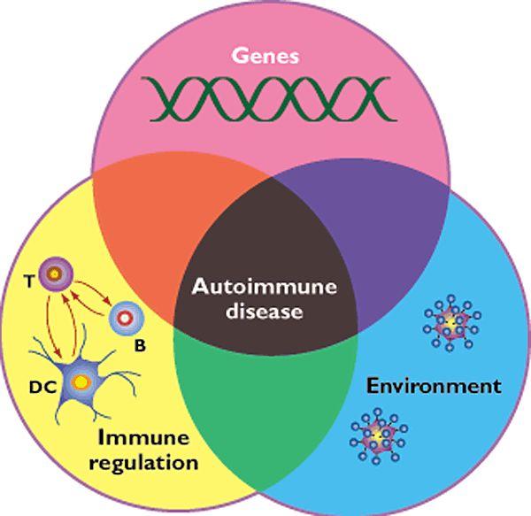 Autoimmuunisairaudet ja patofysiologiset mekanismit: hoito ravinnolla sekä stressinhallinnalla