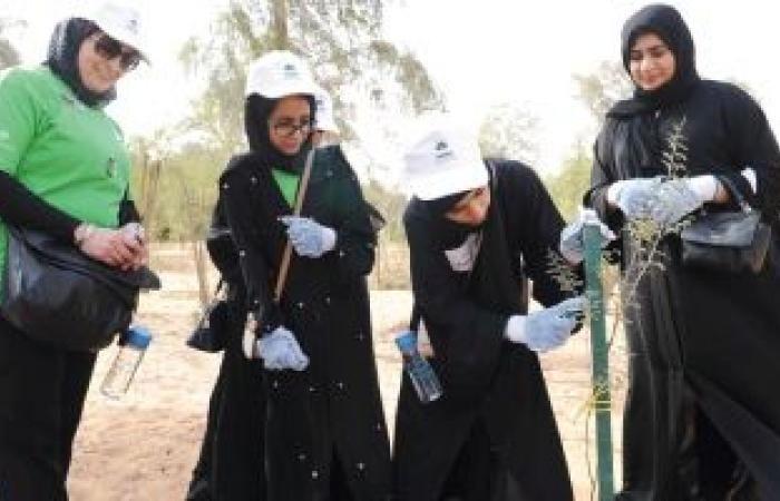 اخبار الامارات اليوم - مدارس أبوظبي تنفذ 1281 مشروعاً ...