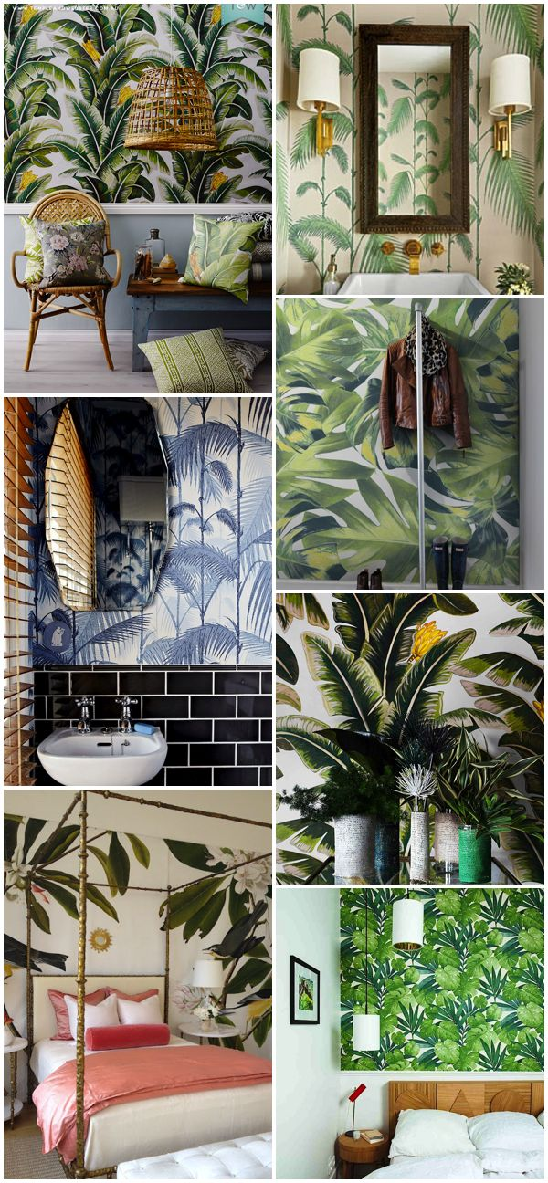 Paredes tropicales/ Tropical walls