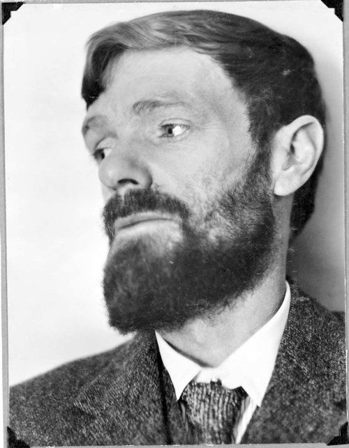 """D.H. Lawrence (1885-1930) """"All people dream, but not equally. Those who dream by night in the dusty recesses of their mind, wake in the morning to find that it was vanity. But the dreamers of the day are dangerous people, For they dream their dreams with open eyes, And make them come true."""""""